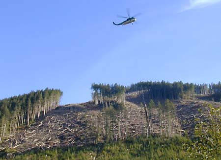 Heli Logging East Walbran November 9th, 2003